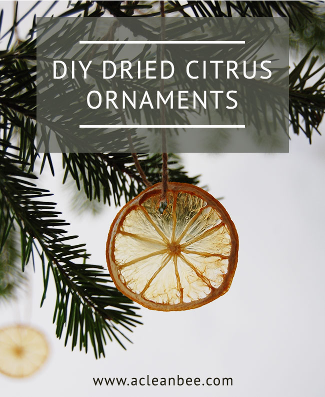 Dried Citrus DIY Christmas Ornaments